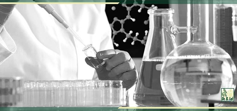 Career Prospects in Biotechnology