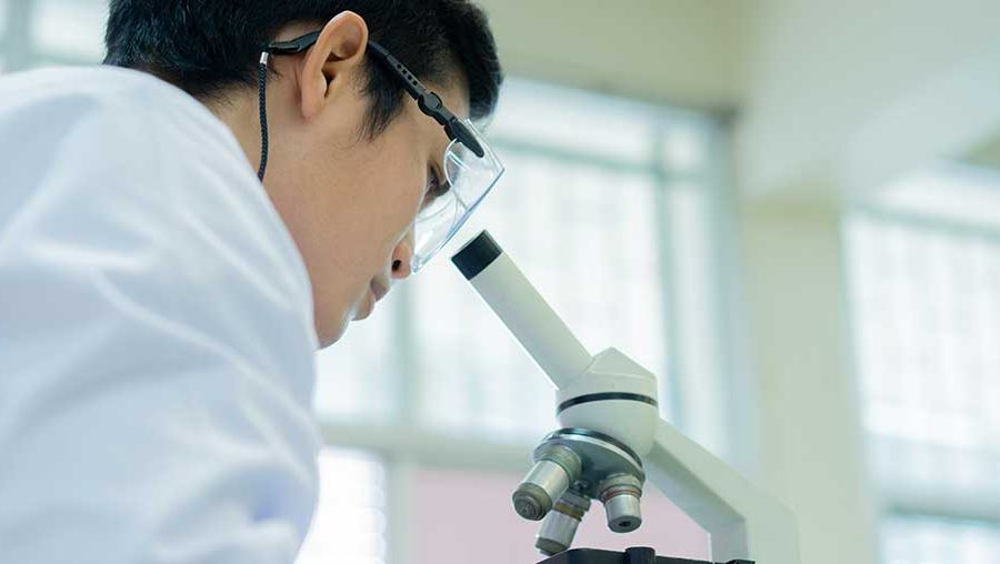 Career after 12th Science (Biology) through Biotechnology Degree