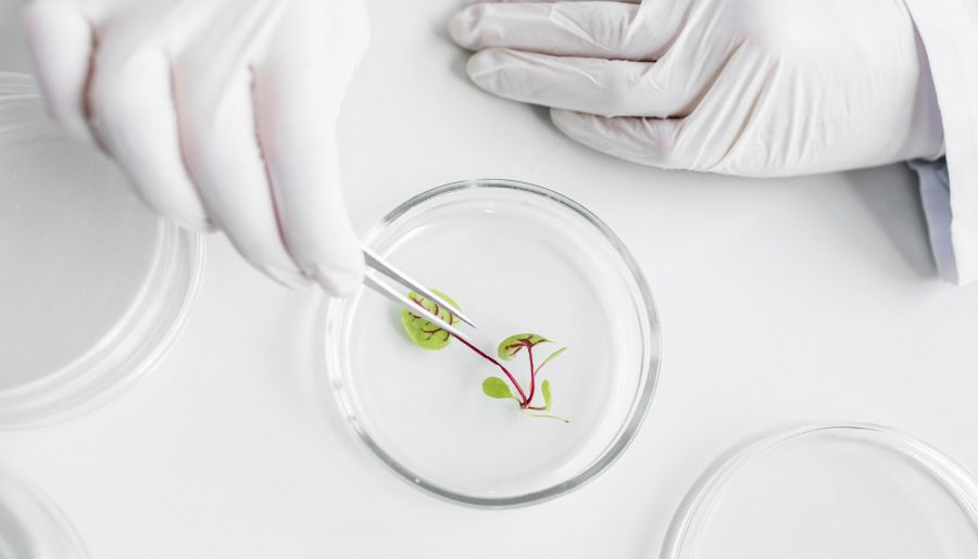 Latest Trends in Biotechnology in 2021