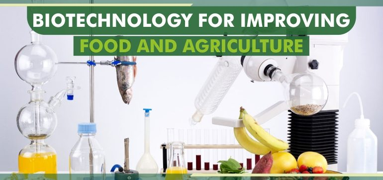biotechnology in food