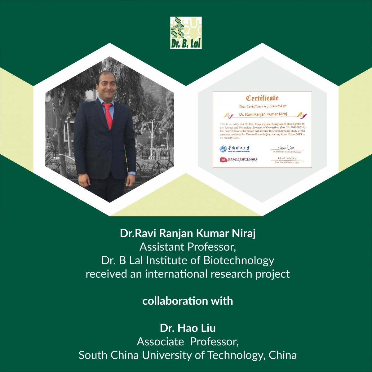 International Research Project Collaboration